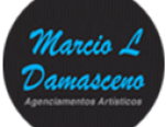 Marcio L Damasceno